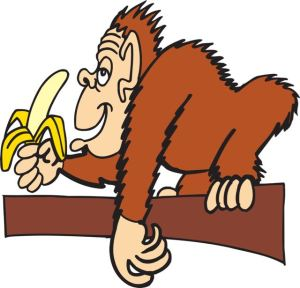 ape-banana-pixabay44564