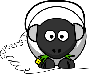 sheep-158247