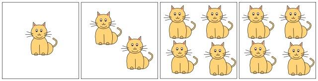 catpatternmatching3